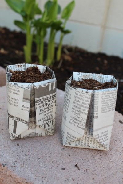 Diy Seed Starter Compostable Newspaper Pots Mama S Nook